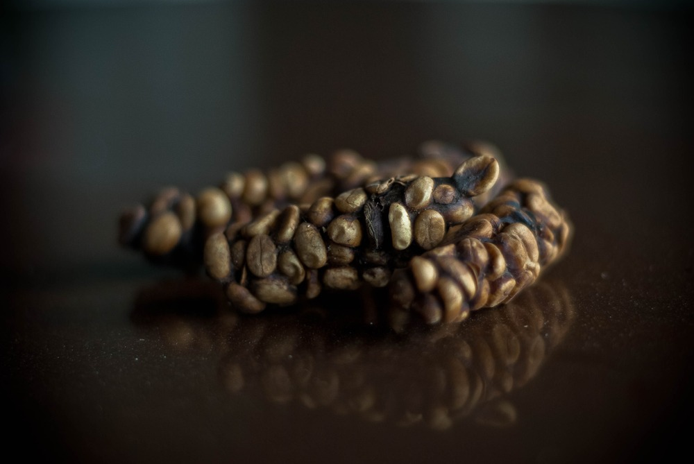 Monkey Coffee Beans